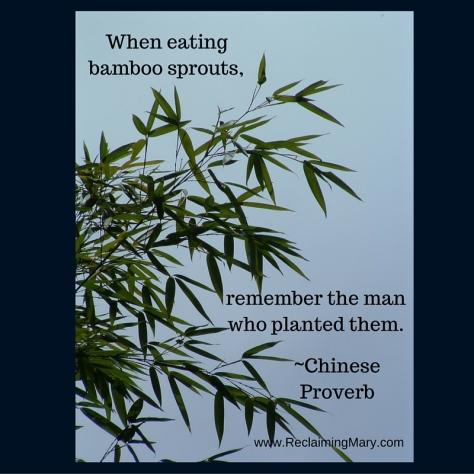 bamboo gratitude 2
