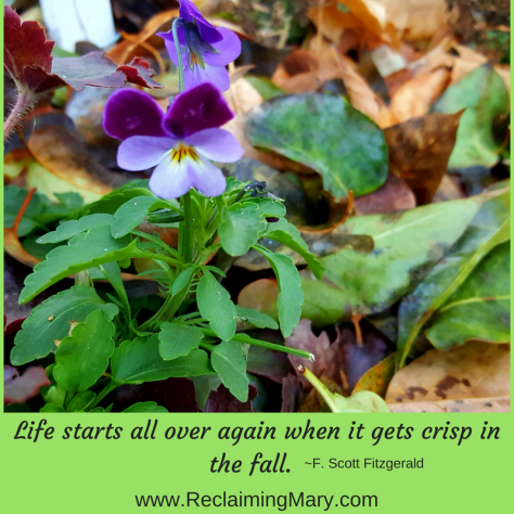 Life starts all over again when it gets crisp in the fall..png